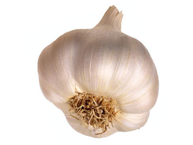 Garlic, the powerhouse of healthy living